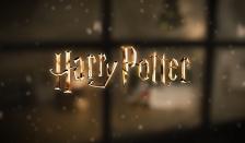 Magische Weihnachten mit dem Harry Potter Tarnumhang!